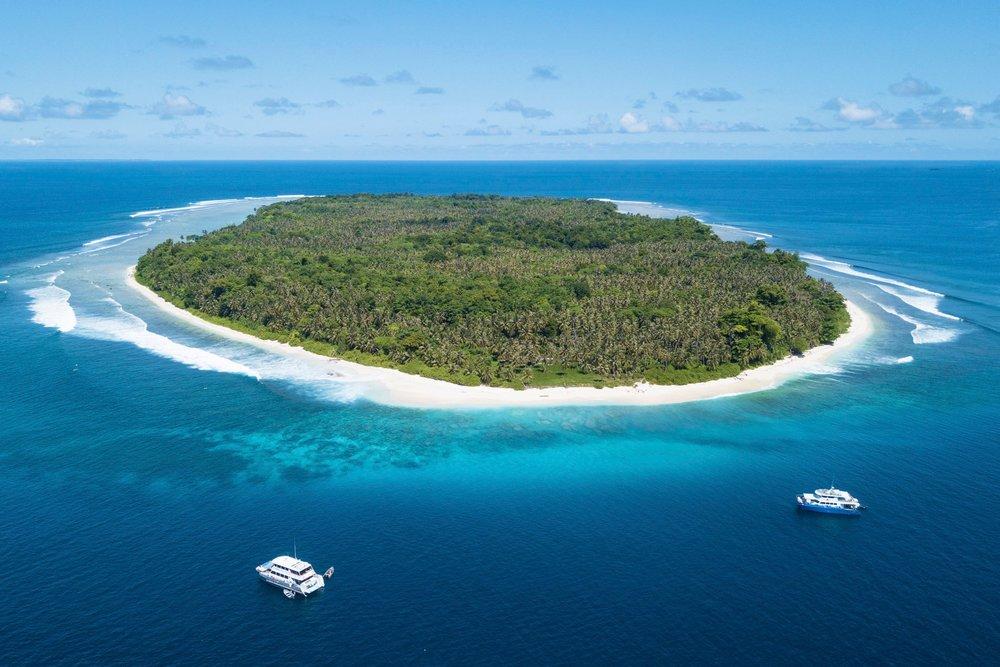 Mentawai - Free to Roam