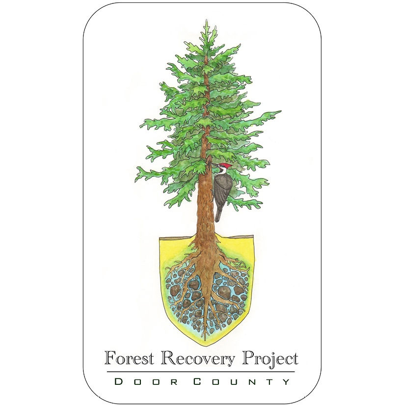 FOREST RECOVER PROJECT OF DOOR COUNTY