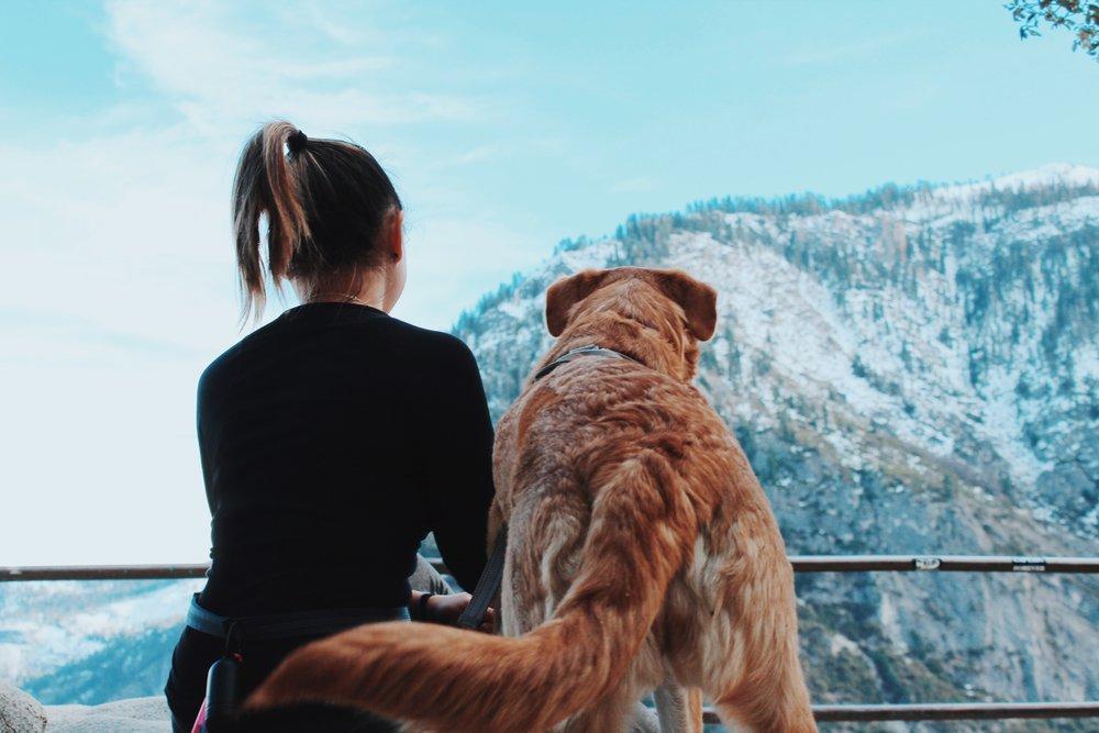 Yosemite - Dec 2018
