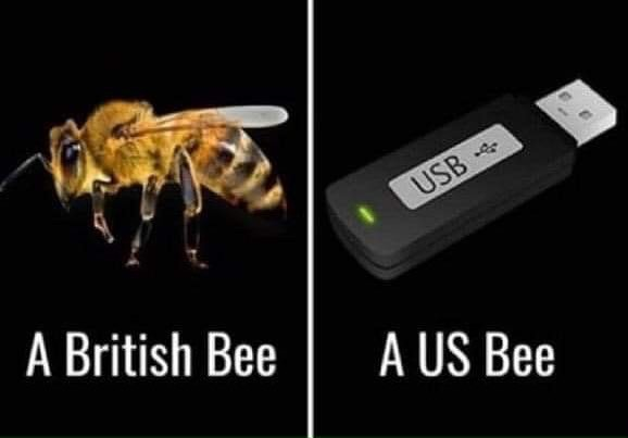 Know the difference. #beekeeping