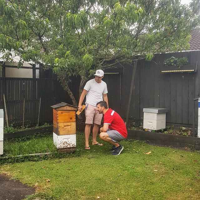 First stop for all visitors, straight out to the hives.