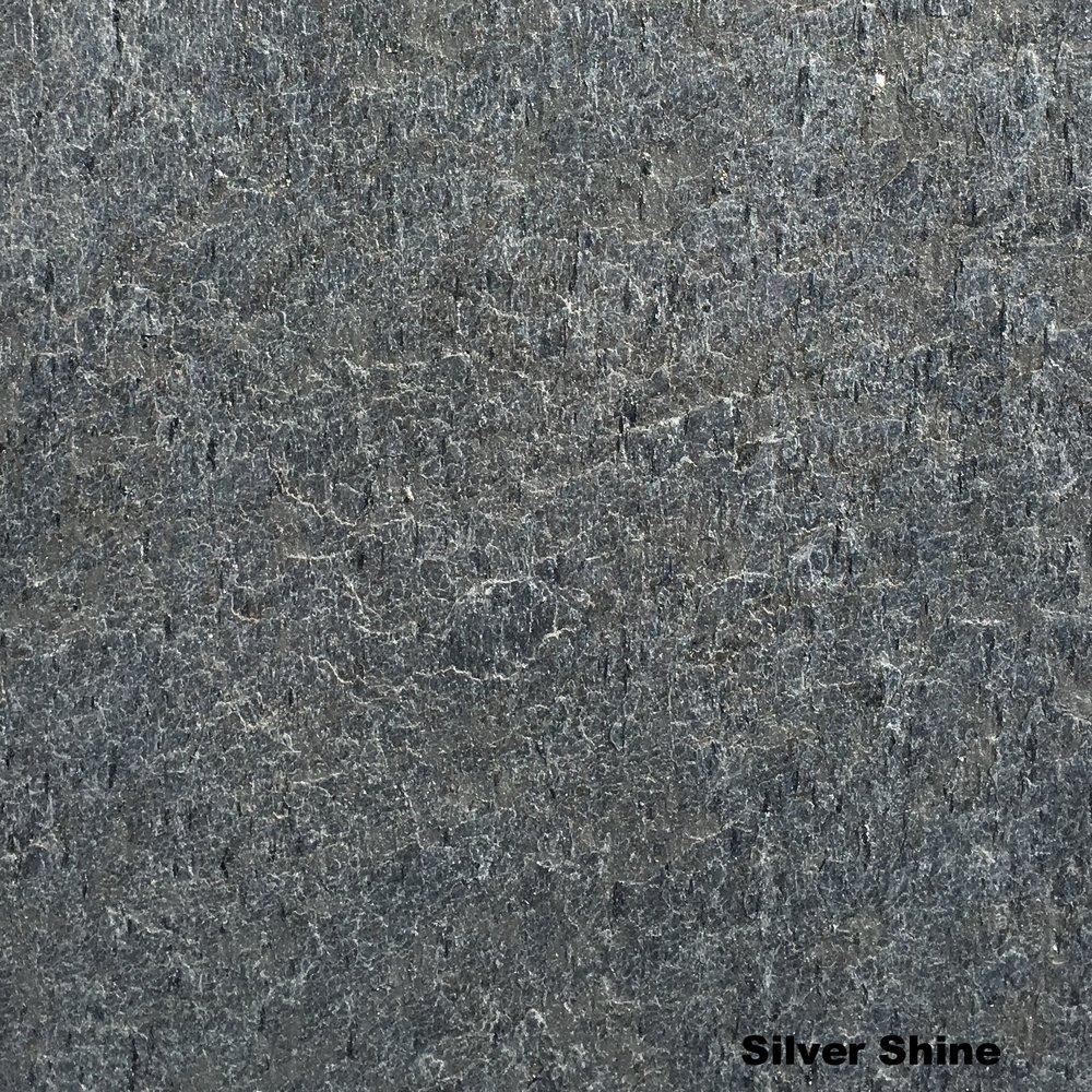 Silver Shine 600.JPG