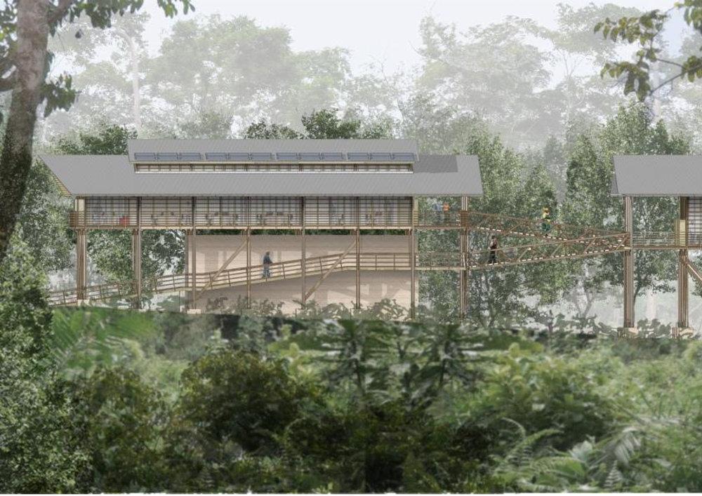 GOLA RAINFOREST NATIONAL PARK HQ - GOLA / SIERRA LEONE