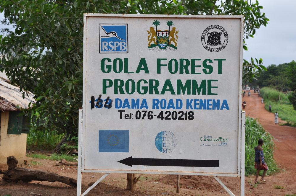 Gola Rainforest - 7.jpg