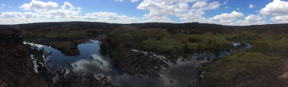 One of the 'Bogs of Doom'