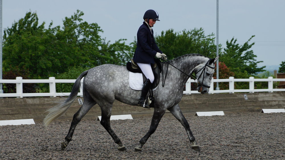 Dressage outdoors