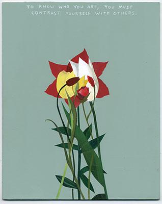 flowers-mdnf-(9).jpg