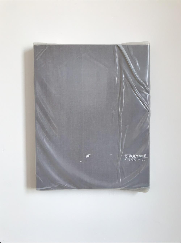 """Monochrome with Poly Wrap,  2018,  Acrylique sur toile de lin, 20"""" x 16""""."""
