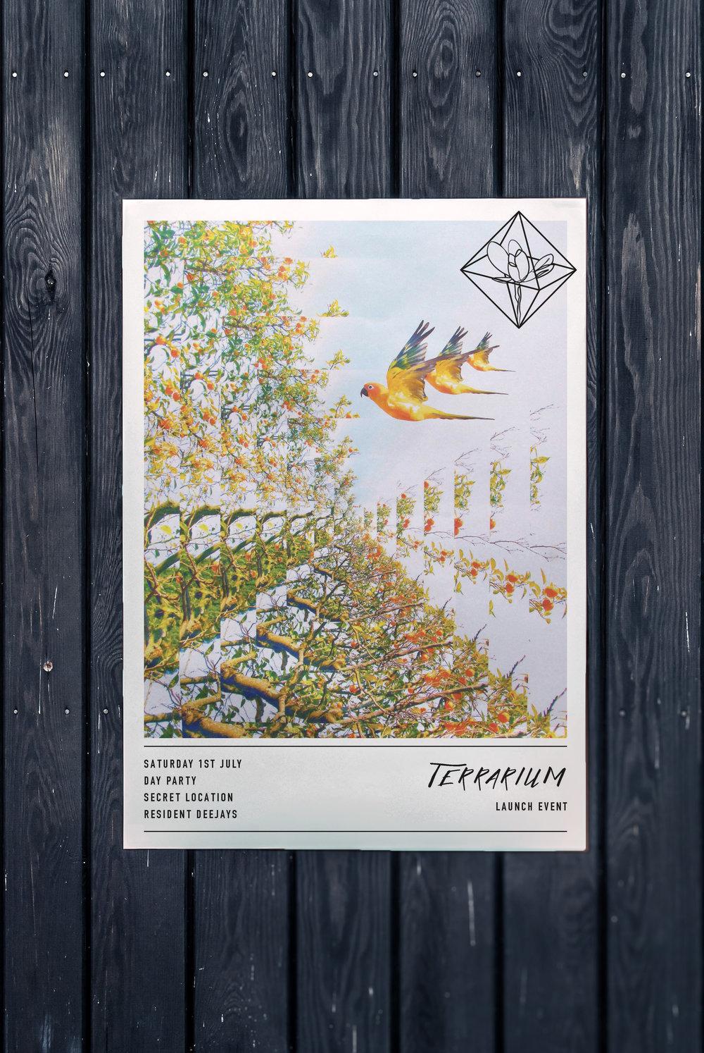 Terrarium Launch