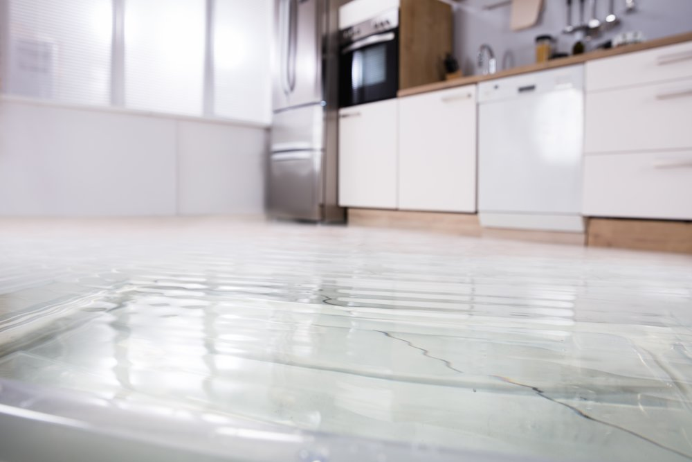 BURST PIPES - Burst pipes are one of the leading causes of water damage. Leaks can  allow massive amounts of water to be displaced in a short amount of  time, causing severe damage to your home or business.
