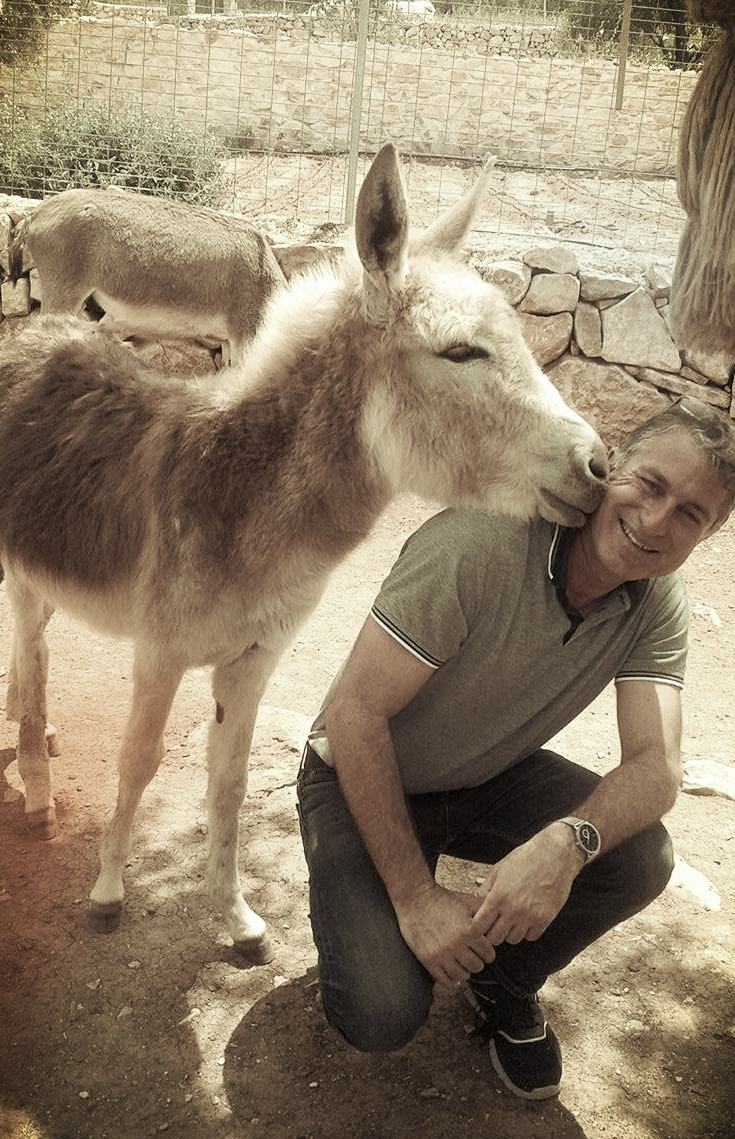 donkey kiss 2.jpg