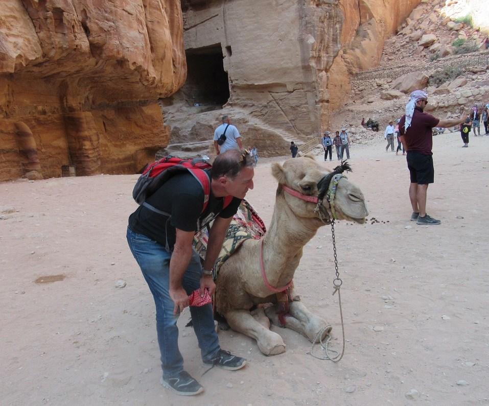 camel talk.jpg