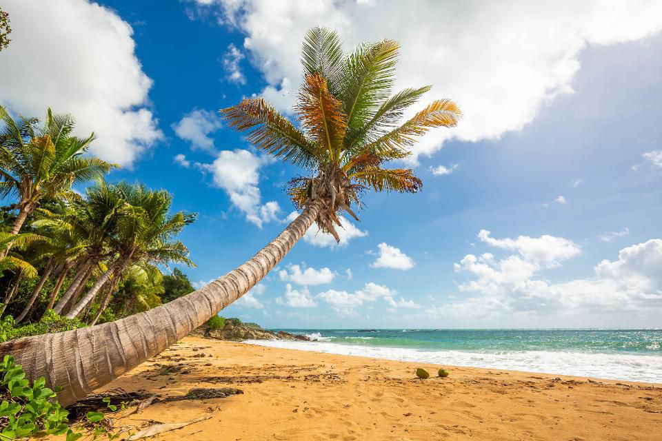 An Advanced Media Ad Campaign For Puerto Rico Tourism - Written by Brad AgateIndependent Media Consultant