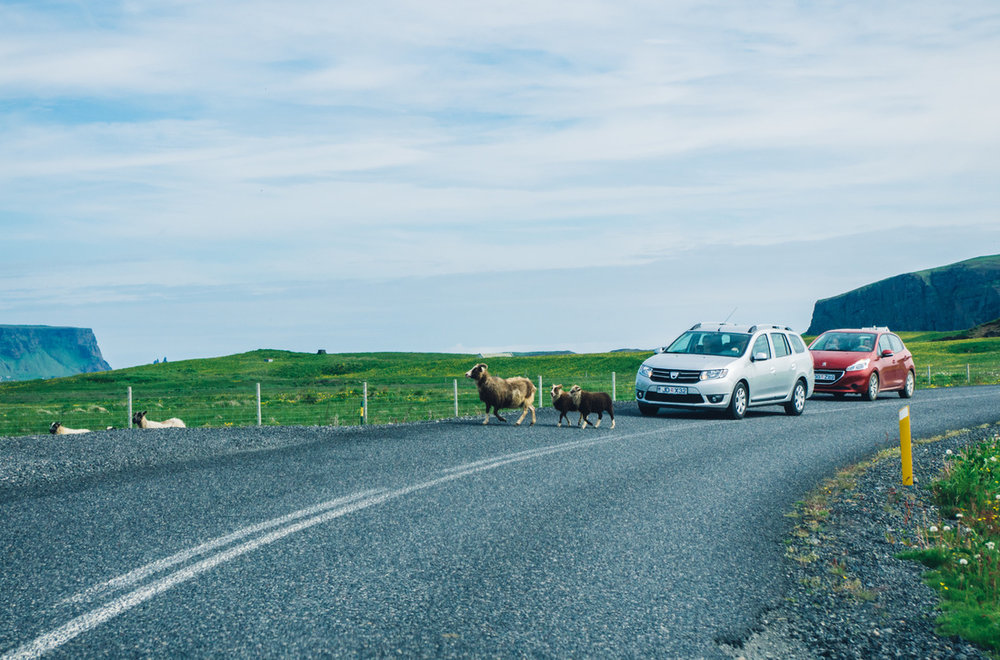 Iceland Trip (11).jpg