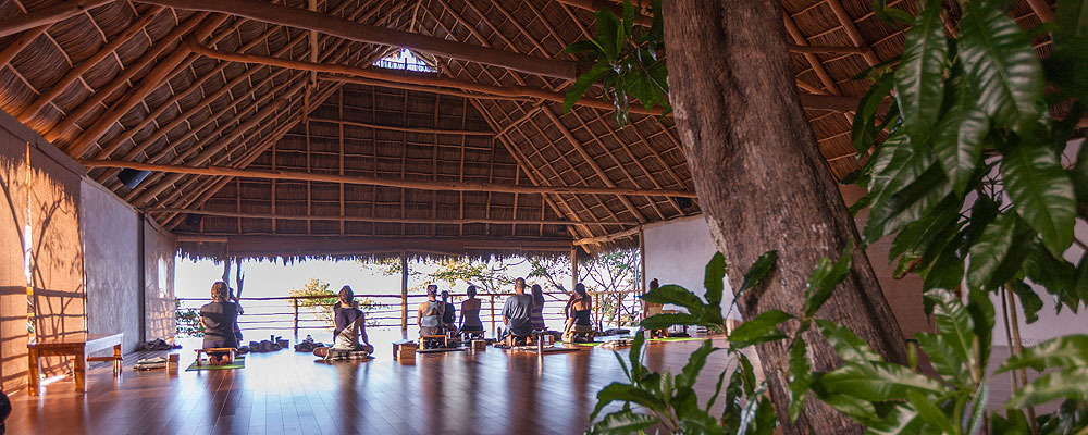 Xinalani Yoga Retreat Center - Yoga | Surf | Chill