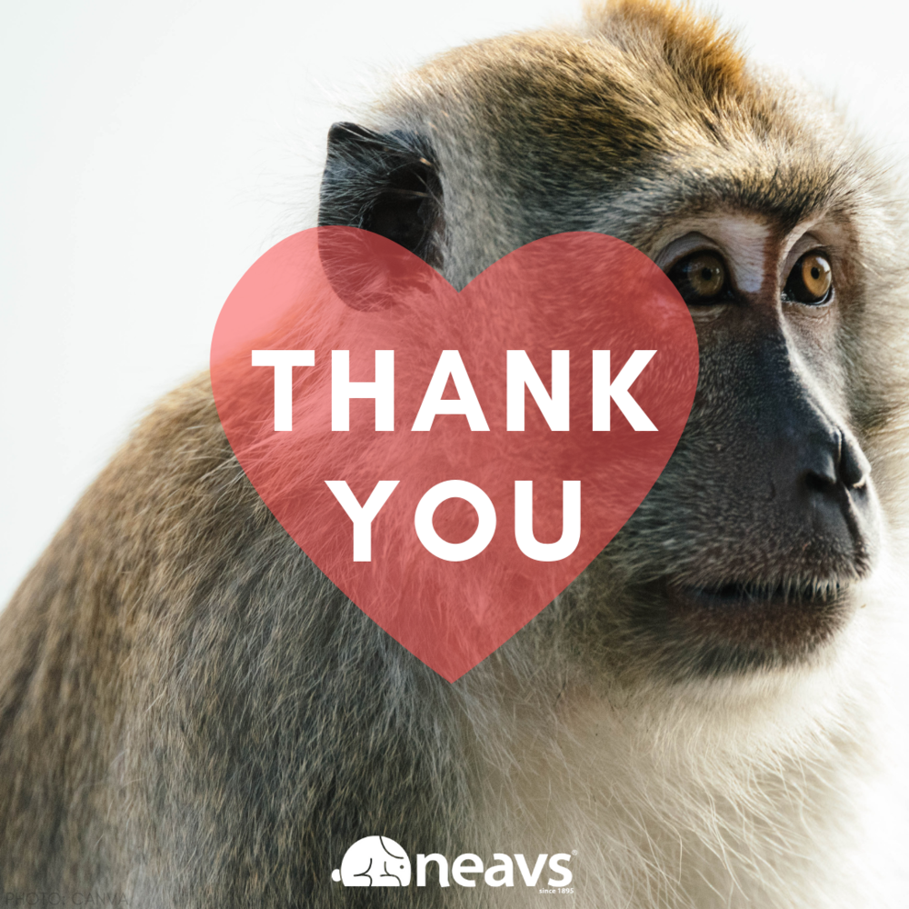 neavs thumbnail thank you booker bill primate donation page.png