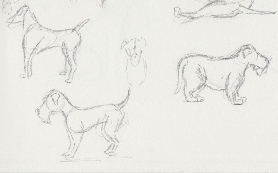 Dog Show Sketches 2