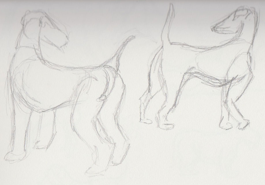 Dog Show Sketches 4
