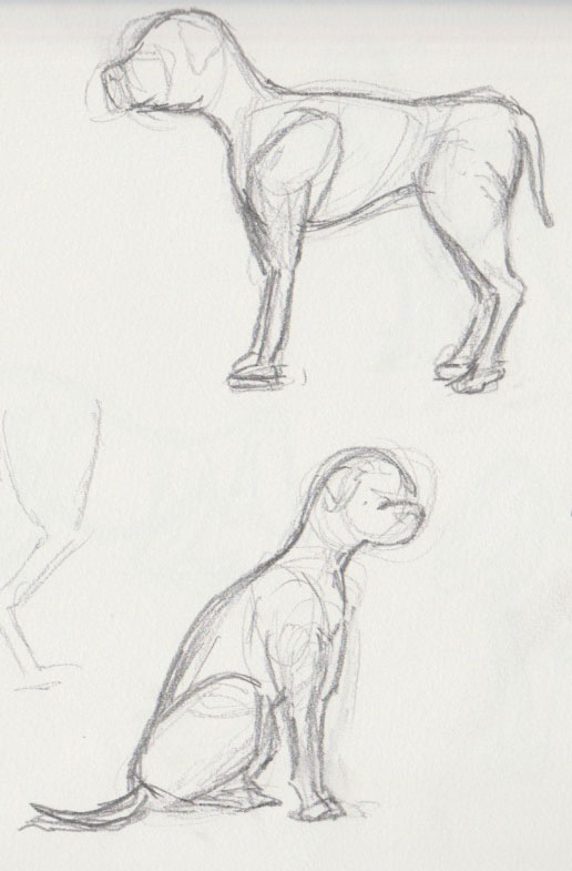 Dog Show Sketches 3