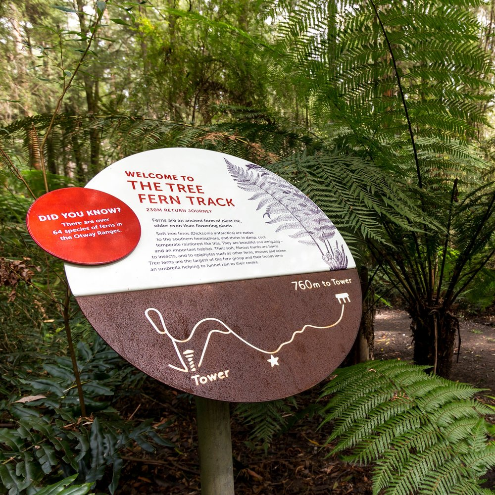 Otway Fly Signage Trail, Otway Fly Treetop Adventures