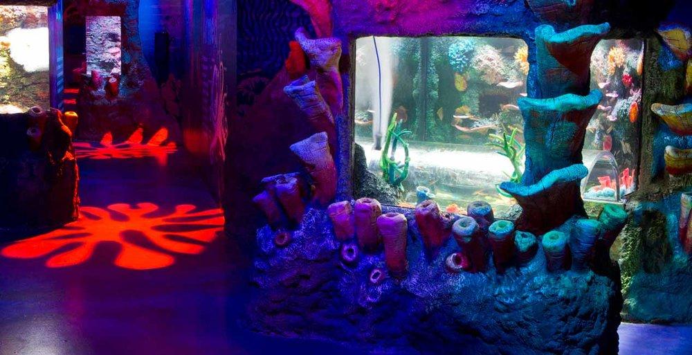 slma-coral-caves.jpg