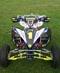 thumb_John Mitchel 07 Race YFZ2.jpg