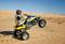 thumb_lt500_action-wheelie_.jpg