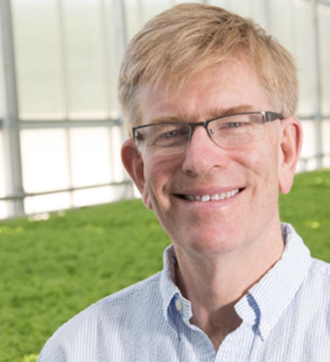 paul sellew - Founder & CEO, Little Leaf Farms