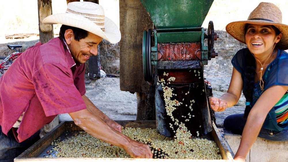 Farmer Mateo Perez and his wife, farmer Doris Benitez. Blue Bottle proudly buys their coffees through Catracha Community Company. All photos courtesy of Carly Getz.