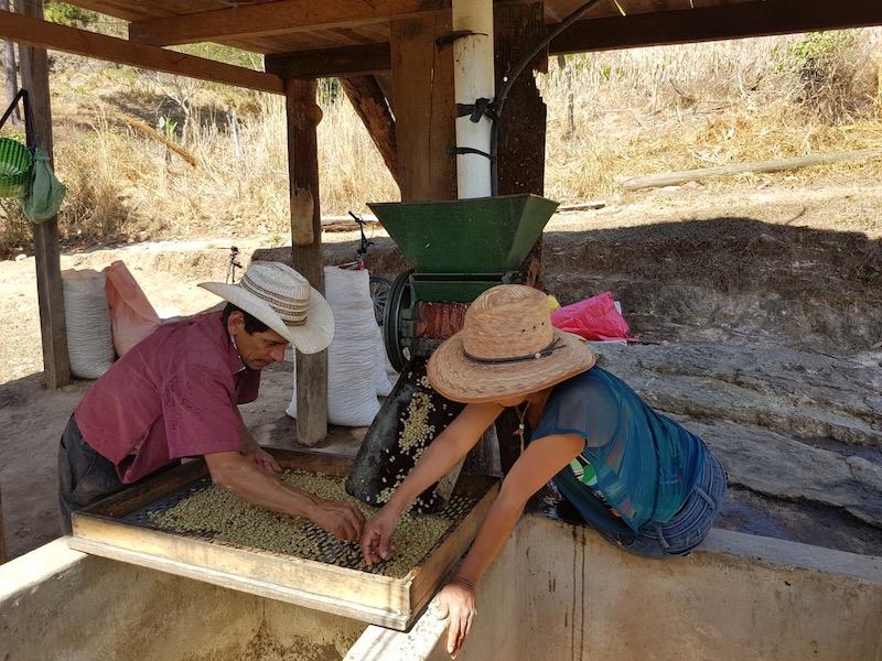 Catracha farmer-members, Mateo and Doris Benitez