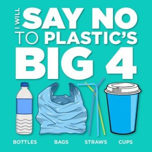 say-no-toplastic-300x300.jpg