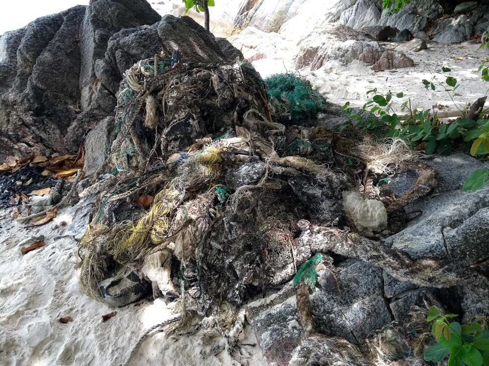 Some nets collected while working on Pulau Rawa, IWCI