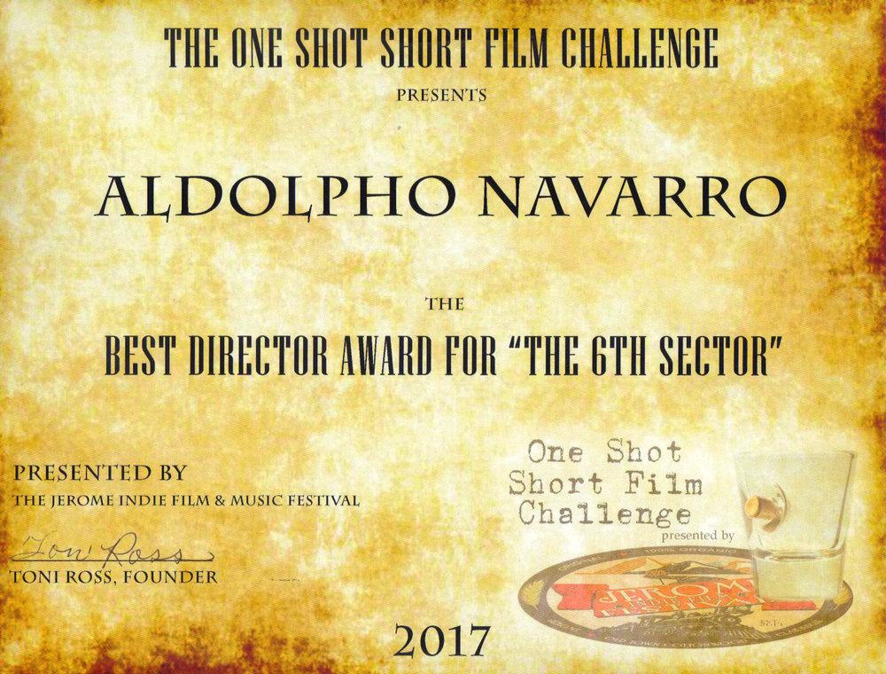 Award Best Director.jpg