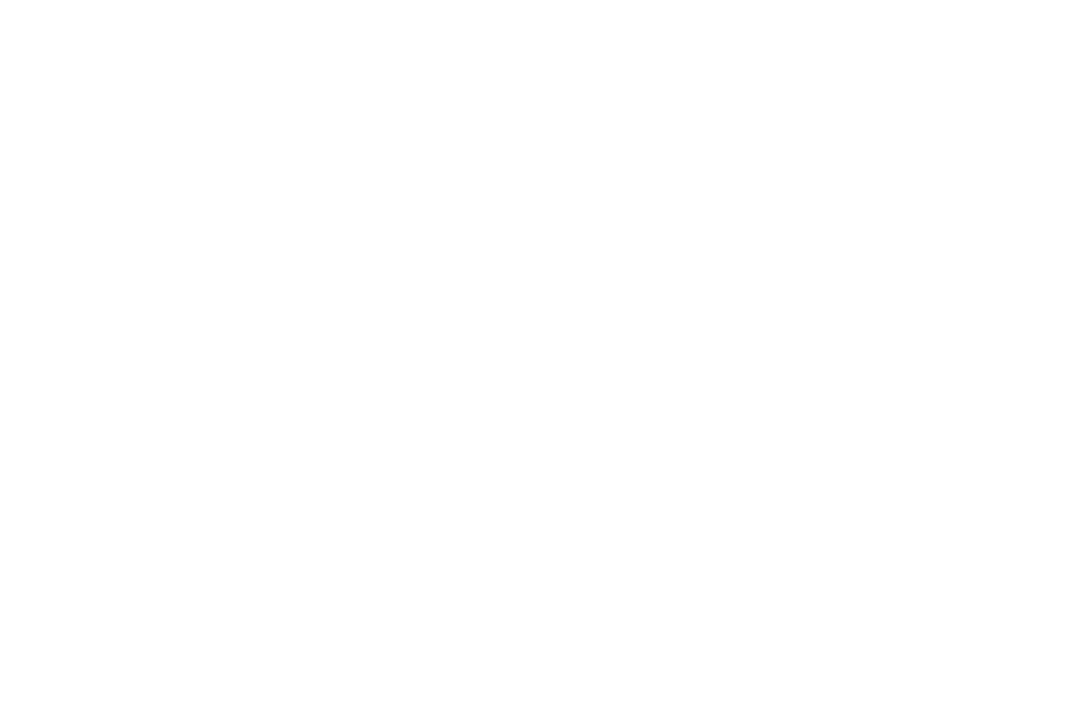 OFFICIAL WINNER - Forbidden Experimental Film Challenge - 2018 (1).png