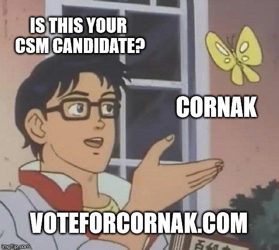 voteforcornak.jpg