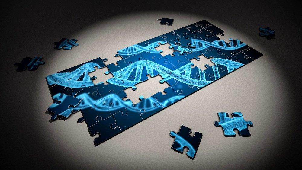 DNA puzzle put together.jpg