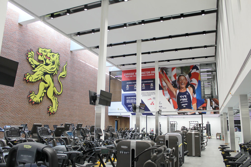 Large Format Gym graphic