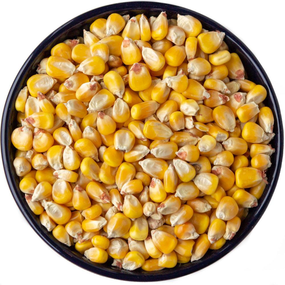 NuVision- Corn.jpg
