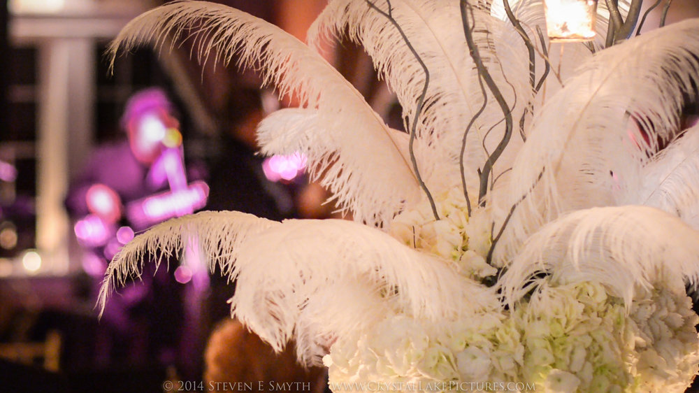 0012_2014NYE_feathers3-2.jpg
