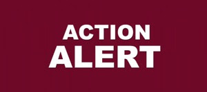 ACTION ALERT in large white letters on a dark red rectangular background