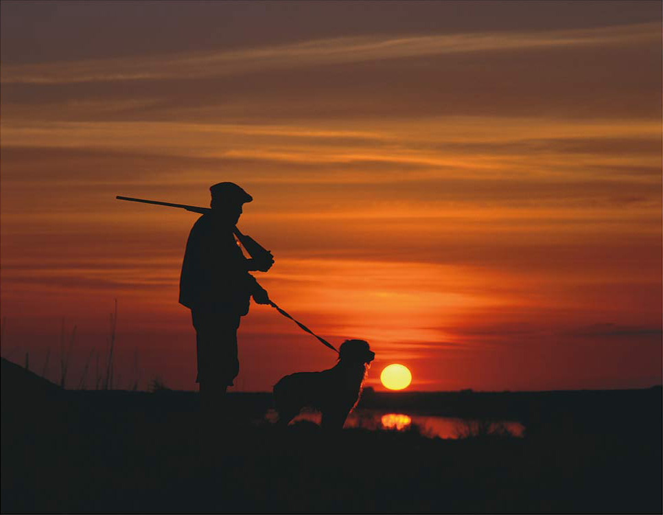 Person standing with a hunting dog in front of the sunset