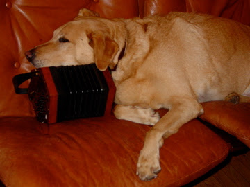 The original banished dog, Cosmo