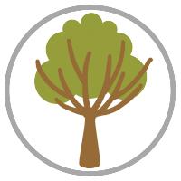 Paola_Pathways_environment_icon
