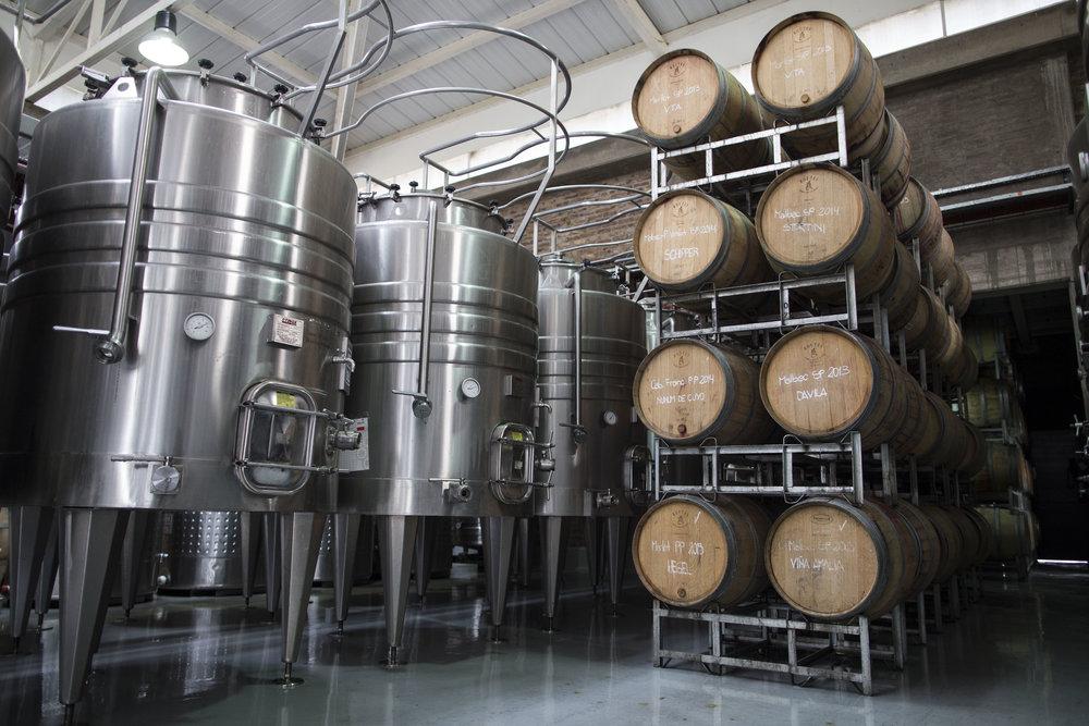 Winery+1.jpg