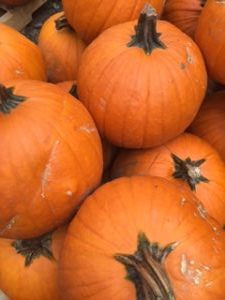 pumpkin-300x225.jpg
