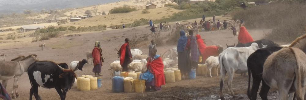 Maasai - water transport w animals.jpg.png