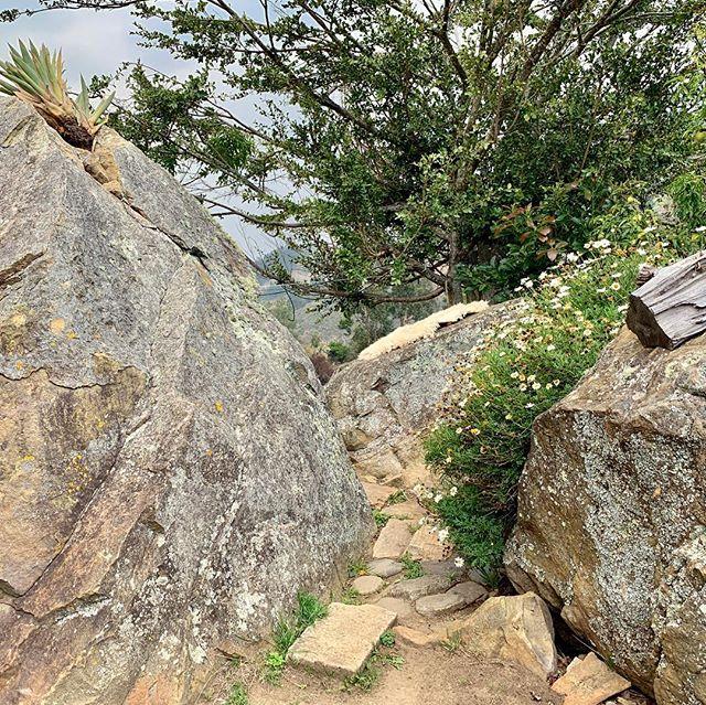 Este lugar sería un paraíso cerca a Bogotá sin no existiera hace 40años la extracción de #carbón de sus montañas. #socota #boyaca cercanías al #paramodepisba y #necadodelcocuy descubriendo junto a #sostenibilidadcrepes @ricardo_peacock @felipemaciaf @alejosses