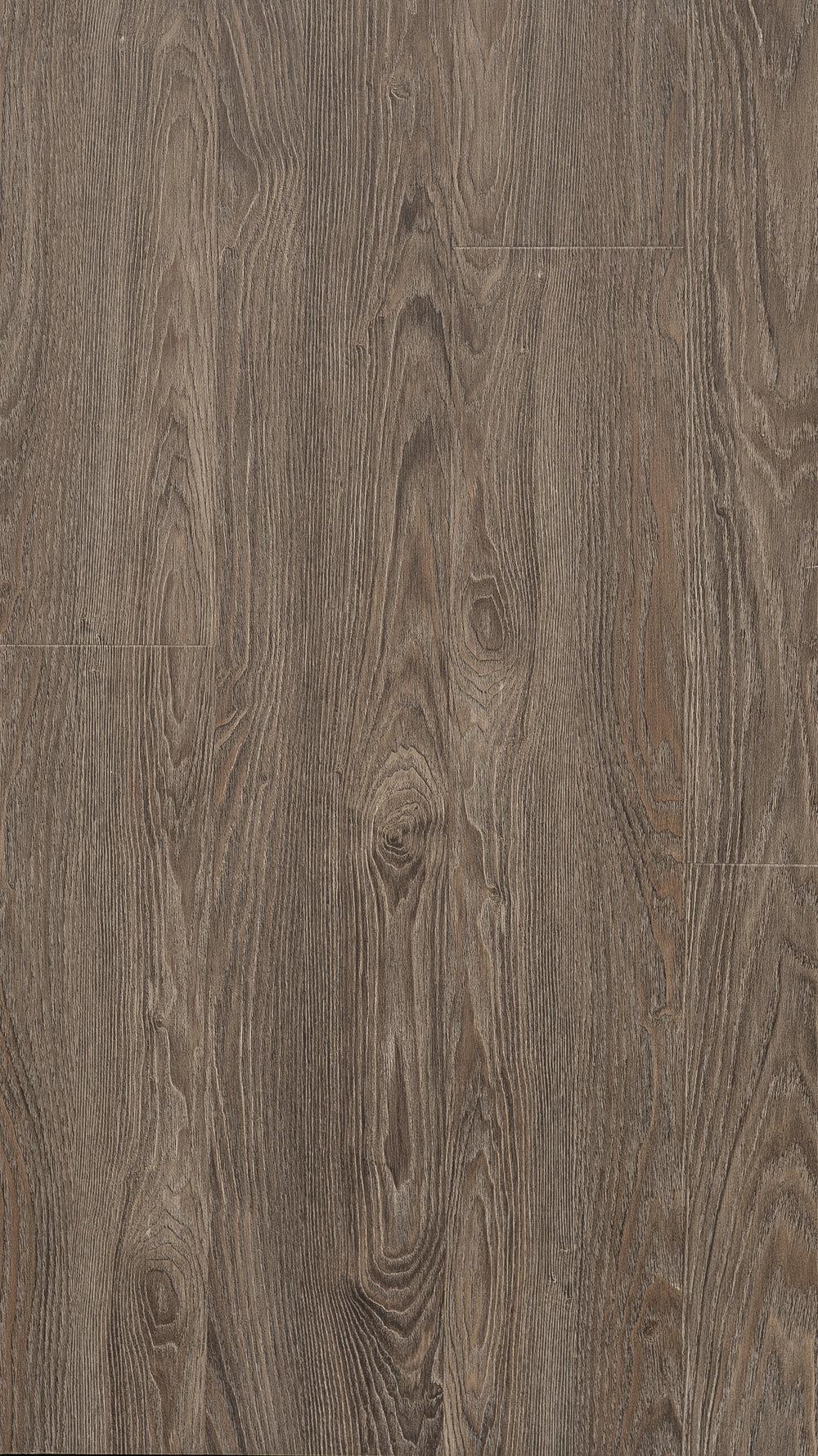 W5014 - Van Dyke Oak