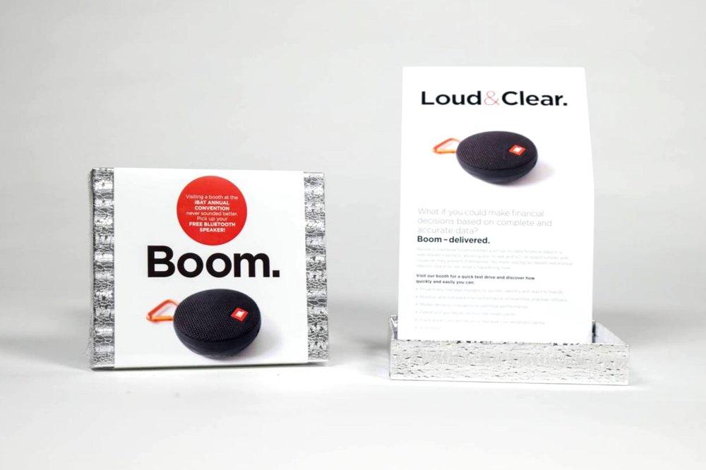 Deluxe_BoomMailer-1.jpg