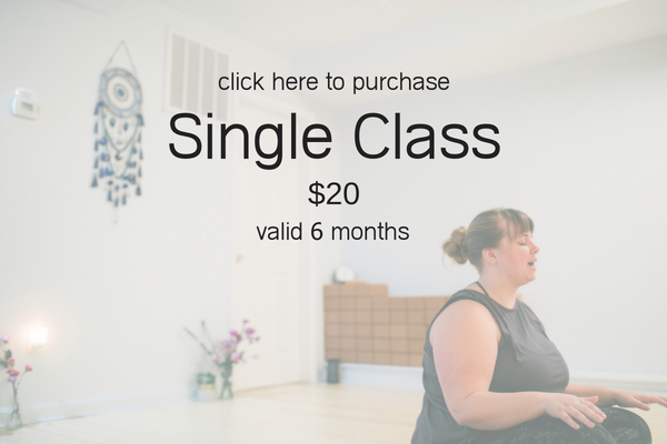 Pricing - single class.png